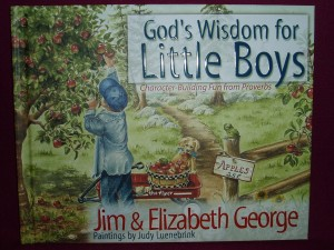 An illustrated book for boys up the age of 5, presenting the wisdom of Proverbs